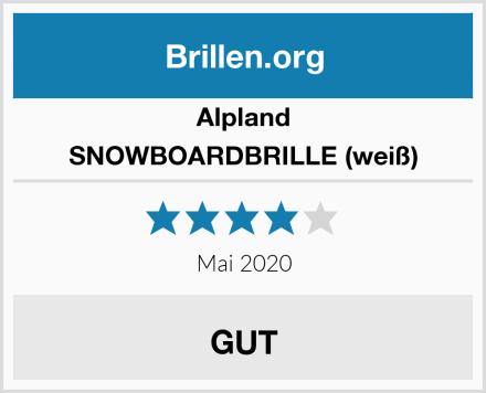 Alpland SNOWBOARDBRILLE (weiß) Test