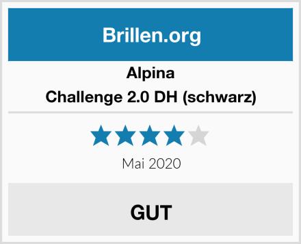 Alpina Challenge 2.0 DH (schwarz) Test
